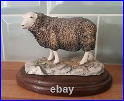 Border Fine Arts Herdwick Ewe 118, Ray Eyres Scotland 1990 on wooden stand