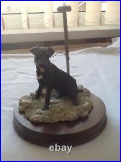 Border Fine Arts Patterdale, Lakeland, Fell, Working Terrier