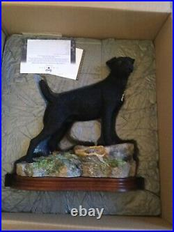 Border fine arts ALERT and READY. PATTERDALE Terrier. BRAND NEW