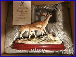 Border fine arts. A GENTLE. MOMENT. Deer Family LAST MEMBERS PIECE MADE