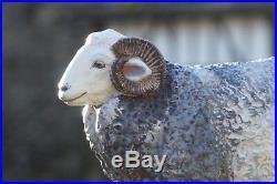 Yew Tree Herdwick Sheep Tup Ram model 40cm x 64cm
